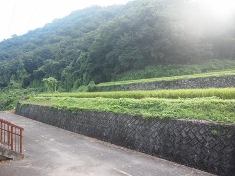 三江線 石見松原(廃止)