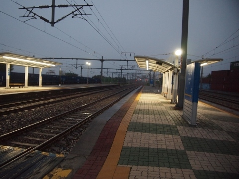 〔韓国〕京釜線 若木