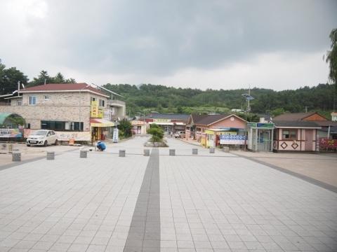 〔韓国〕中央線 花本